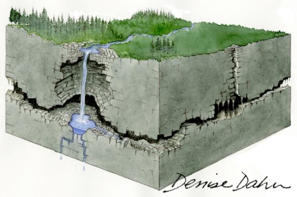 How a karst sinkhole is formed. Illustration by Denise Dahn (www.dahndesign.com/denises-blog/) for an interpretive sign at the Tongass National Forest in Alaska.