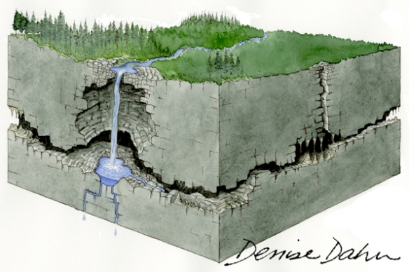 How a karst sinkhole is formed. Illustration by Denise Dahn (www.dahndesign.com/denises-blog/) for an interpretive sign at the Tongass National Forest in Alaska.